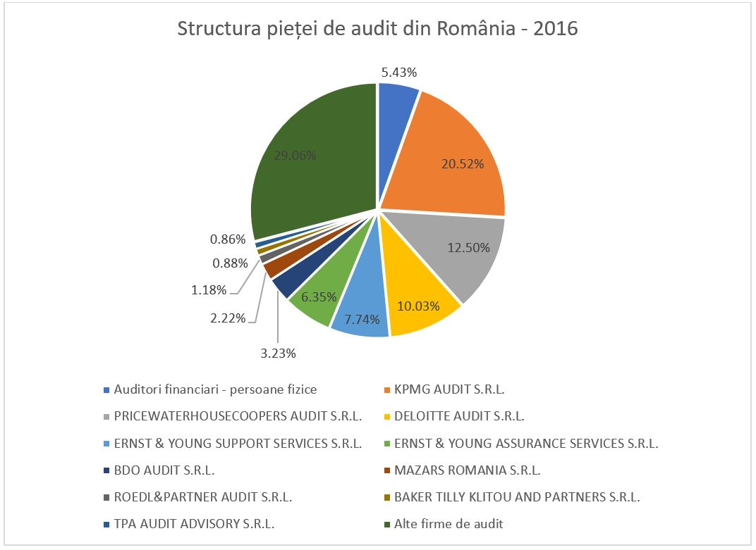 structura_pietei_audit