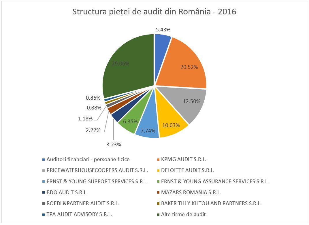structura_pietei_audit